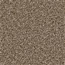 Carpet Broadcast Chestnut 806 thumbnail #1