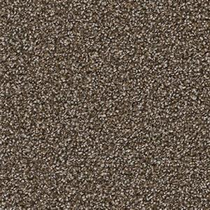 Carpet Gala 6555 SummerBronze