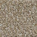 Carpet Cosmopolitan 12' Acorn 858 thumbnail #1
