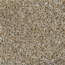 Carpet Cosmopolitan 12' Tumbleweed 883 thumbnail #1
