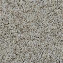 Carpet Cosmopolitan 12' Stucco 905 thumbnail #1
