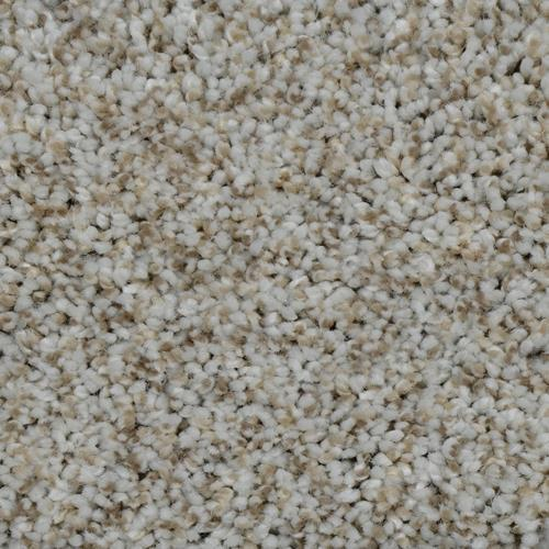 Carpet Cosmopolitan 12' Stucco 905 main image