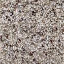 Carpet Astounding II Fiery Clay 545 thumbnail #1