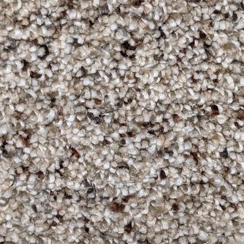 Carpet Astounding II Fiery Clay 545 main image