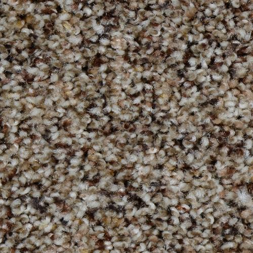 Carpet Renowned Timberidge 587 main image