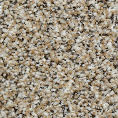 Carpet Renowned Black Sands 801 main image