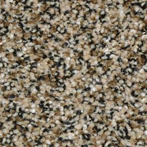 Carpet Renowned 3440 BlackTan