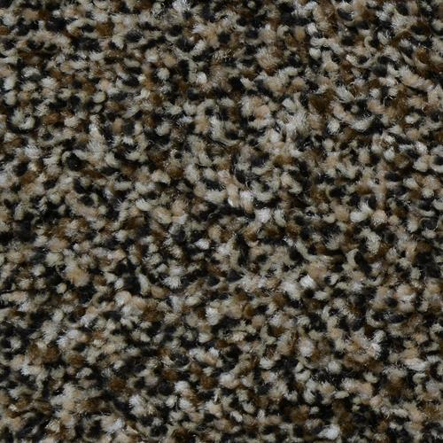 Carpet Renowned Black Forest 901 main image