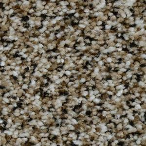 Carpet Renowned 3440 TigersEye
