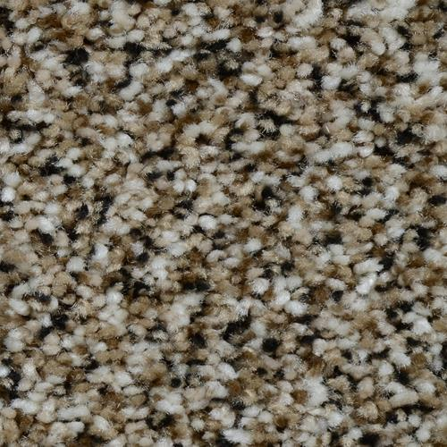 Carpet Renowned Tigers Eye 902 main image