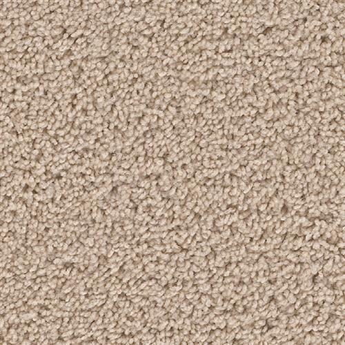 Shop for carpet in Tuscaloosa, AL from Crimson Carpet and Flooring