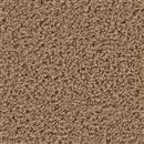 Carpet Above All Cedar Beige 821 thumbnail #1