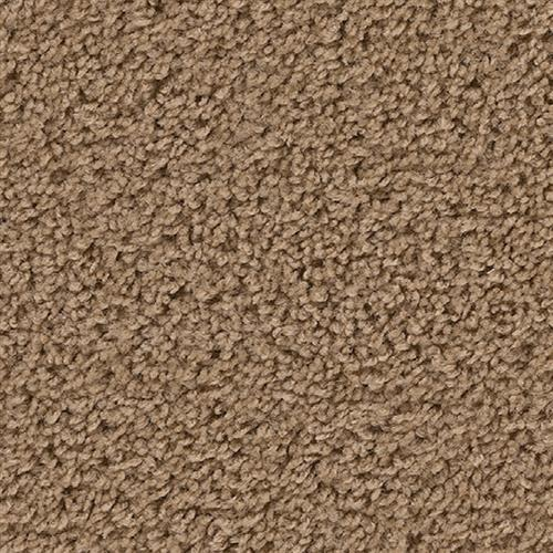 Carpet Above All Cedar Beige 821 main image