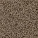 Carpet Above All Buckskin 854 thumbnail #1