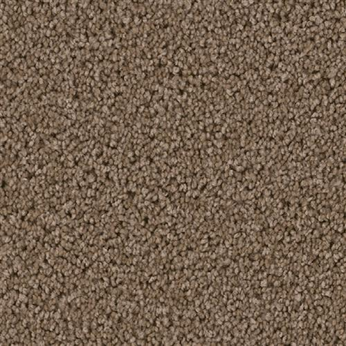Cedar Creek Taupe 565
