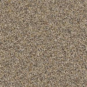 Carpet AweInspiring 4232 Accent