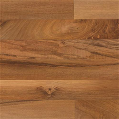 Solutions Bayfield Walnut