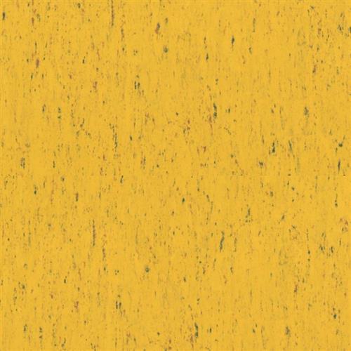 Linofloor Xf Trentino Polly 531 531
