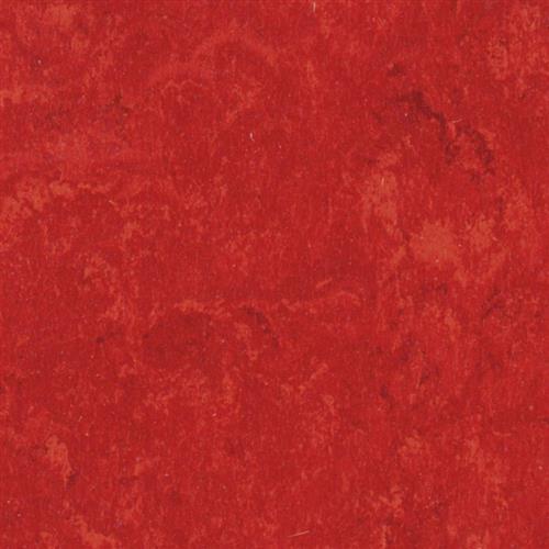 Linofloor Xf Veneto Carmine 645 645