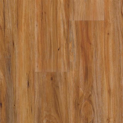 Transcend Click - Planks Pecan Swirl Praline