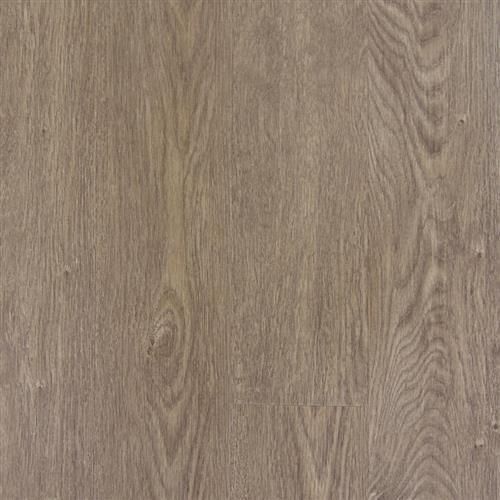 Transcend Click - Planks Brushed Oak Lion