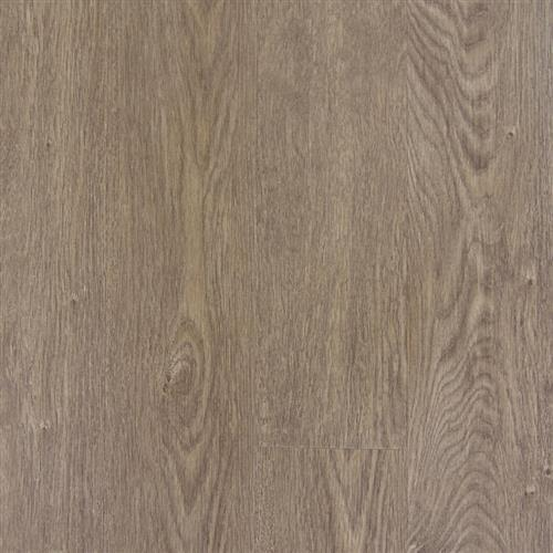 Transcend Click - Planks Brushed Oak Lion