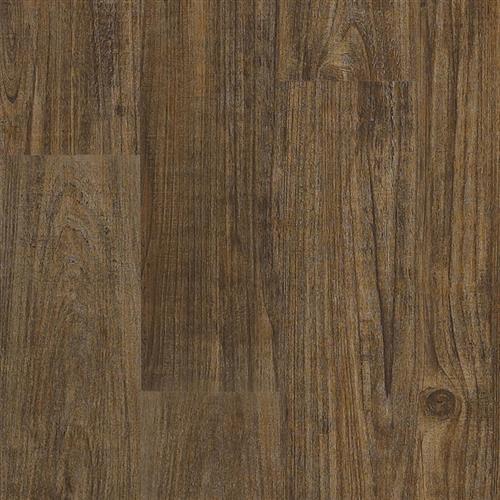 Transcend Click - Planks Long Pine Umber