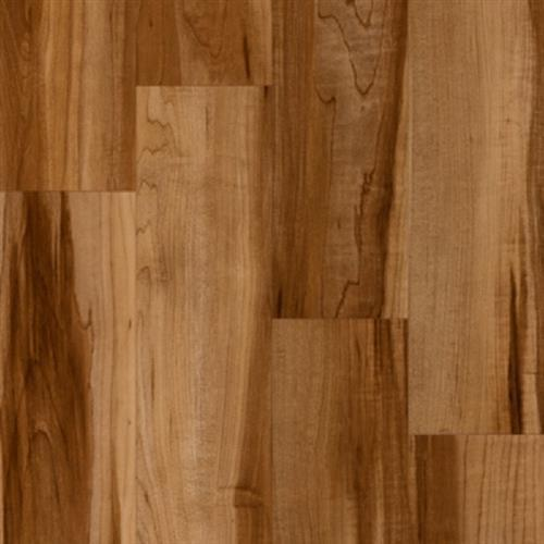 Progen Brushed Pine - Sorrel