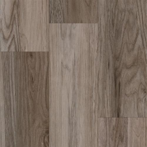 Progen Red Oak - Ginger