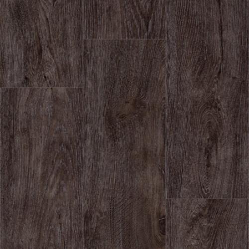 Progen Spicebark Hickory - Fumed