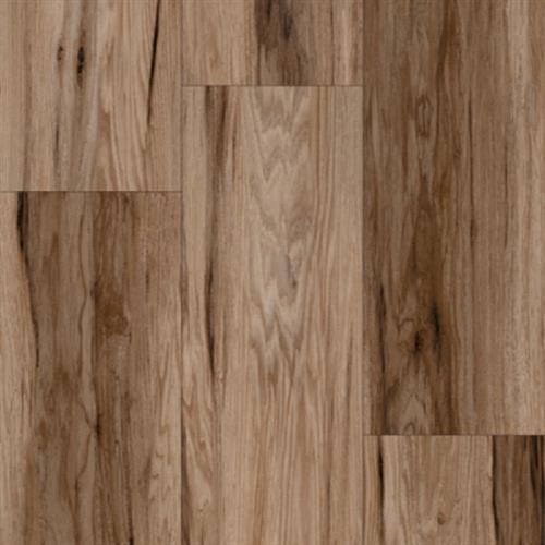 Progen Stained Maple - Carmine