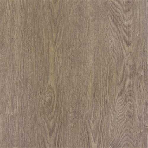 Transcend P Brushed Oak - Lion