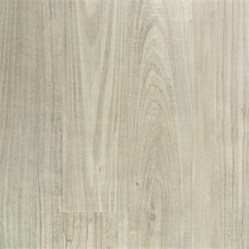Transcend (P) Long Pine - Silver Cloud