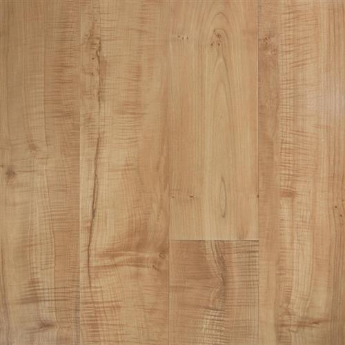 Transcend Sureset - Planks Flamed Maple Acer