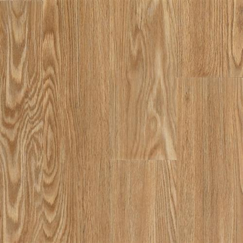Transcend Sureset - Planks Nothern Red Ginger