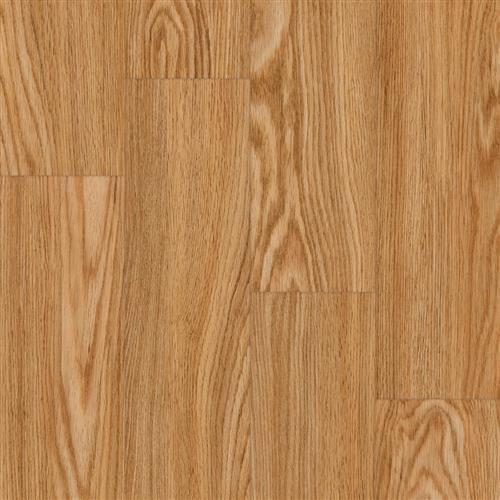 Progen in Red Oak Ginger - Vinyl by Tarkett