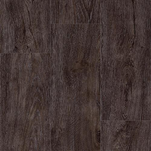 Progen Aurora Oak Starry Night 3915