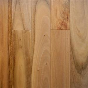 Hardwood Blackbutteucalyptuspilularis SH-BBSYNA SydneyNatural