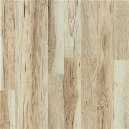Aviara Plank Bainbridge