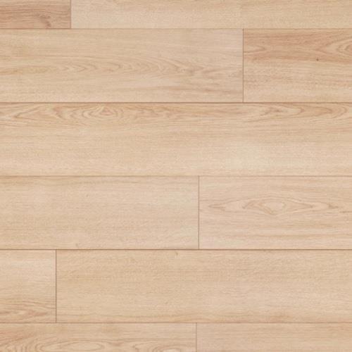 Carnegie Plank Kimura