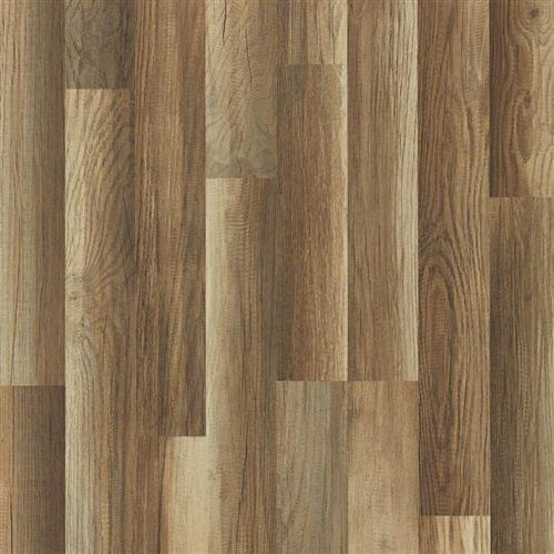 Dougherty Plank Fulton