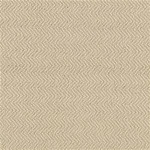 Carpet AgaveReflections 4157929145 Driftwood