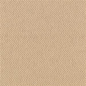 Carpet AgaveReflections 4157929401 Hemp