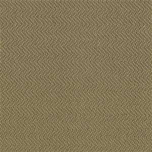 Carpet AgaveReflections 4157929524 Cypress