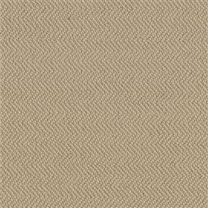 Carpet AgaveReflections 4157929532 Rush