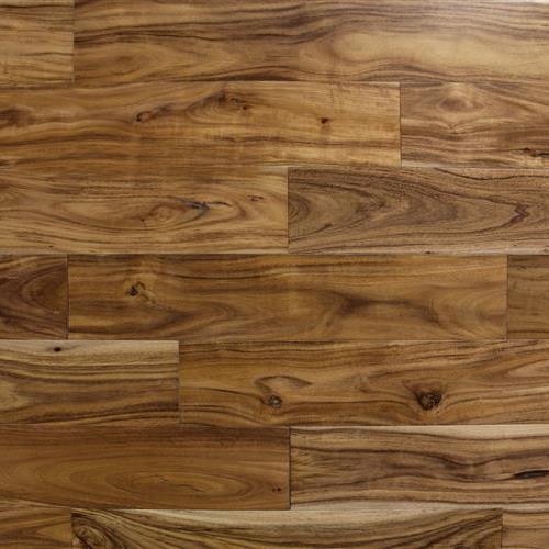 Warple Plank Albany