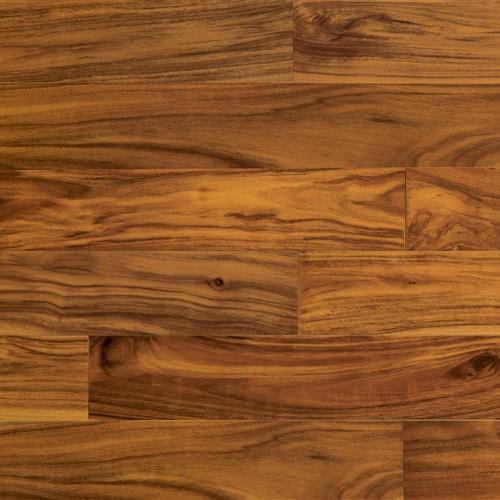 Warple Plank Rochester