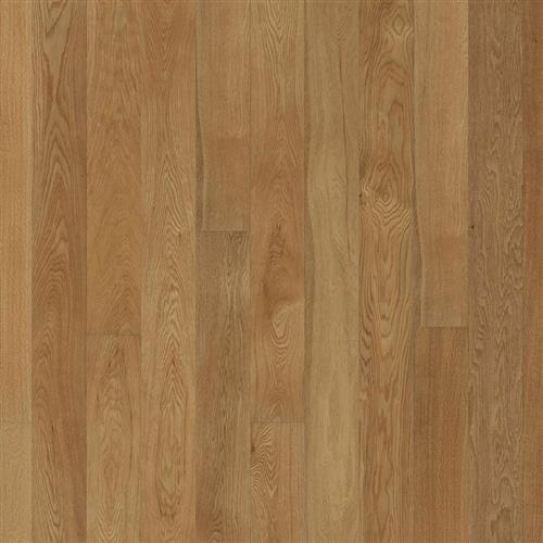 Canvas Collection Oak Tapa
