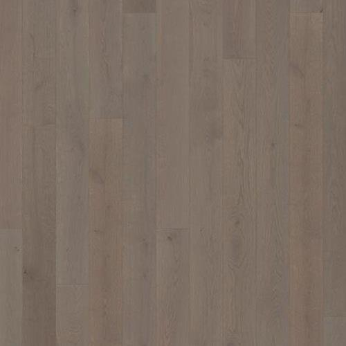 Canvas Collection Oak Morel