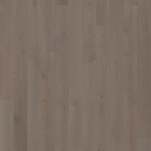 Canvas Collection Canvas Oak Morel